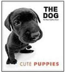 The Dog: Cute Puppies - IMPORTADO
